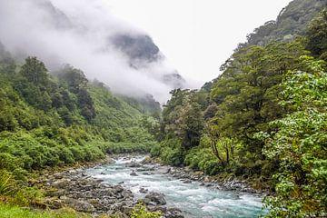 Nevelwoud bij Haast Pass, Nieuw Zeeland van Christian Müringer