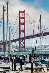 Golden Gate Bridge vanaf de Presidio Yacht Club