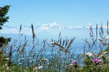 De Mont Blanc von Gijs de Kruijf