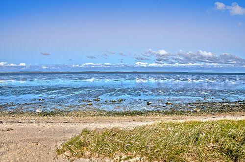 Het wad bij Noordzee-eiland Amrum van