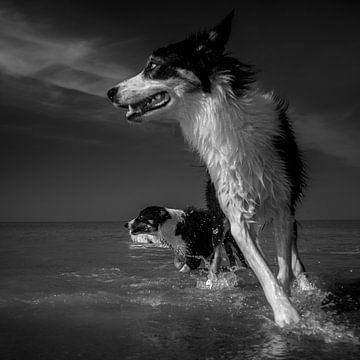 Een scherpe bocht in zee