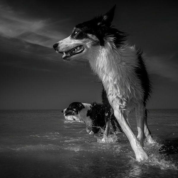 Een scherpe bocht in zee van Ruud Peters