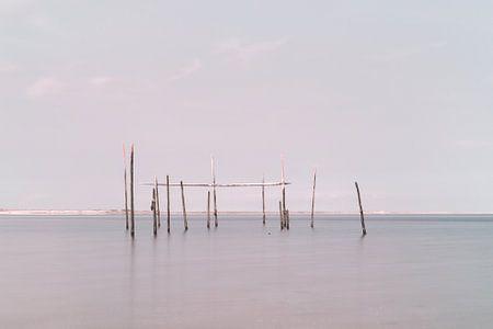 Netze / Fallen Aal in der Nordsee