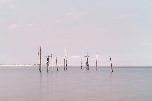 Netze / Fallen Aal in der Nordsee von Miranda van Hulst