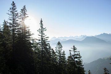 Mistig berglandschap van Sasja van der Grinten