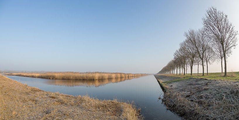 Flevolandschap #01  van Michiel Leegerstee
