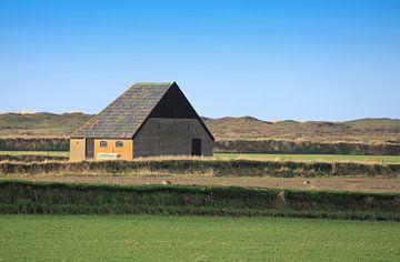 Texel van Jose Lok