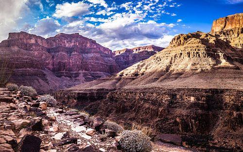 Grand Canyon Arizona Verenigde staten. Een prachtig stukje Natuur
