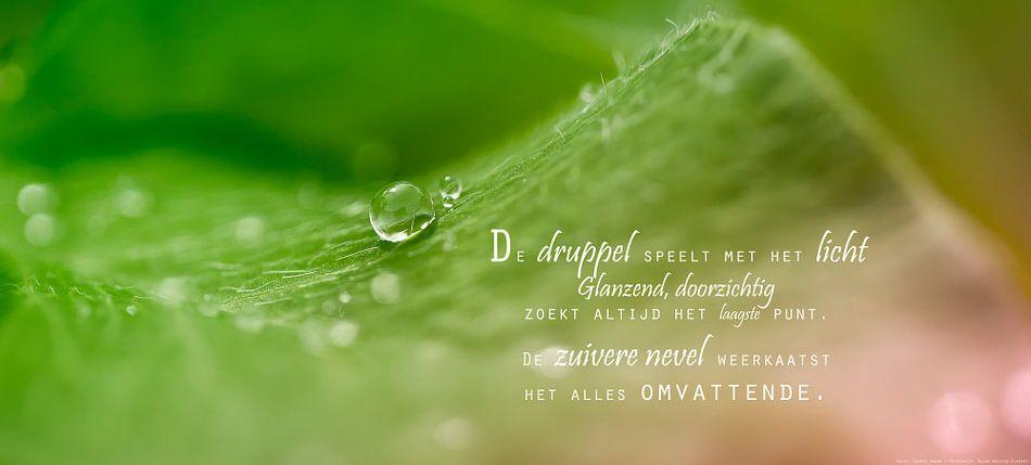 Water en licht van Beeld en Poëzie