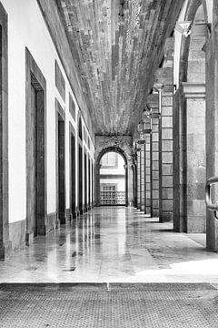 Colonnade d'Athènes convertie en noir et blanc sur