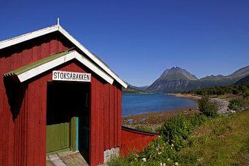 Rode schuur aan een van de fjorden in Noorwegen van Coos Photography