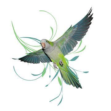 Vliegende muisparkiet van Bianca Wisseloo