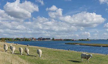Blick auf den Urlaubsort Lemkenhafen von Peter Eckert