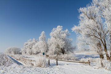 Winter in Zwingelspaan Moerdijk von Ron A.B.