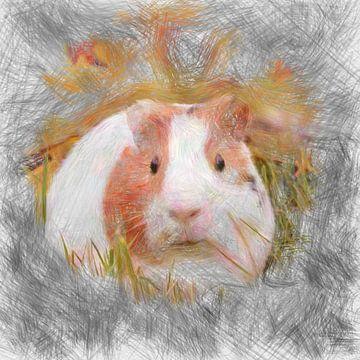 Artistic Animal Guinea Pig 2 von Angelika Möthrath