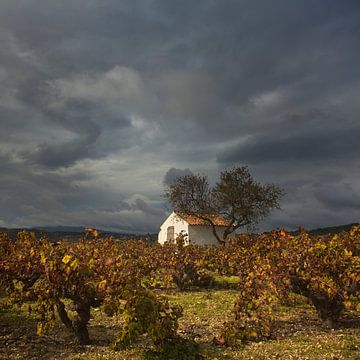 Spanien landschaft von Peter Bolman