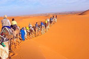Kamelen karavaan door de zandduinen van de Sahara desert