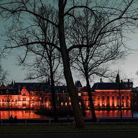 Hofvijver Den Haag van Raoul Suermondt