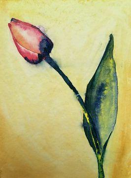 Tulp von Jessica van Schijndel