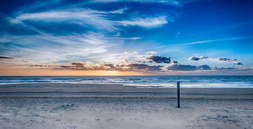 Voorjaar op het Hollandse Strand van