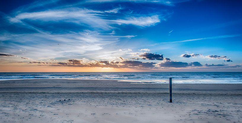 Voorjaar op het Hollandse Strand van Alex Hiemstra