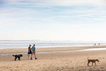 Spaziergänger am Strand von Percy's fotografie