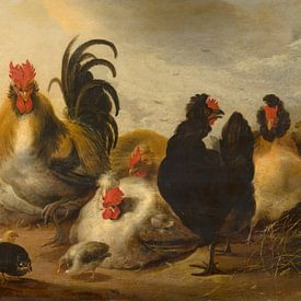 Haan en kippen in een landschap - Melchior d'Hondecoeter van Marieke de Koning