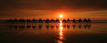 Kamelenrit tijdens zonsondergang sur