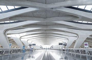 Gare Lyon Saint Exupéry. sur Sander van der Werf