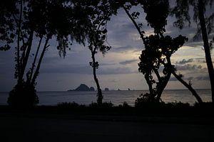 Schaduw van bomen tijdens een zonsondergang in Thailand sur Smithfotografie Joey