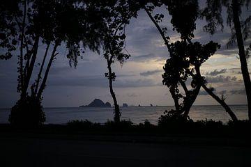Schaduw van bomen tijdens een zonsondergang in Thailand van Smithfotografie Joey