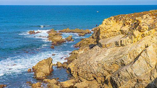 Visser op rotsen in Alentejo, Portugal