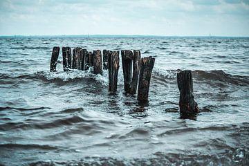 Hölzer im Wasser von Laurenz Heymann