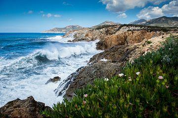 Corsica sur Johan Vet