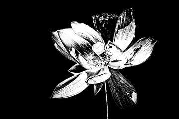 Les Jardins D'eau 11 von Esther Swaager ( Studio Toet)