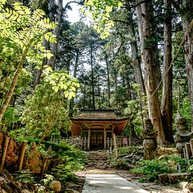 Okunoin cemetery, Koyasan, Japan van H Verdurmen