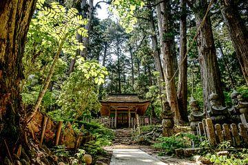 Cimetière d'Okunoin, Koyasan, Japon sur H Verdurmen