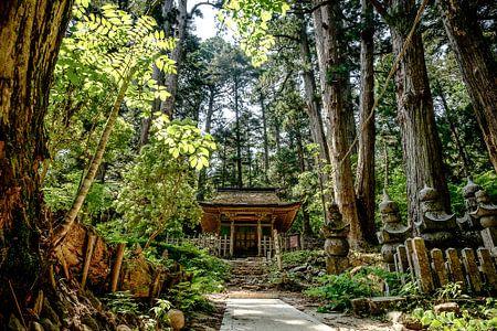 Okunoin Friedhof, Koyasan, Japan von H Verdurmen