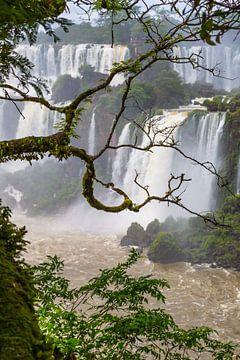 Iguazu watervallen van Peter Leenen