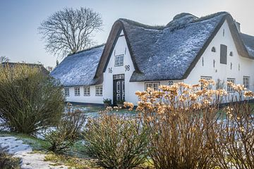 Winter auf Sylt: Historischer Reetdachhof in Keitum von Christian Müringer