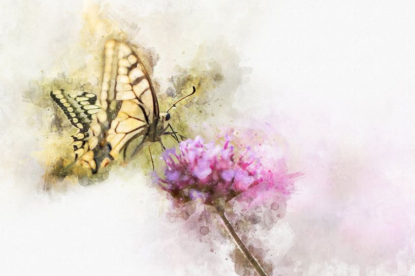 Vlinder 14 van Silvia Creemers