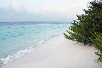 Bounty Island van Jacky Gerritsen