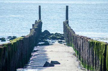 poort naar de zee
