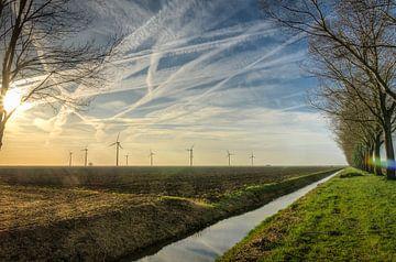 Kaal en droog in de winter bij Almere Pampus van Sven Wildschut