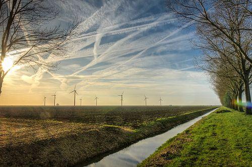 Kaal en droog in de winter bij Almere Pampus