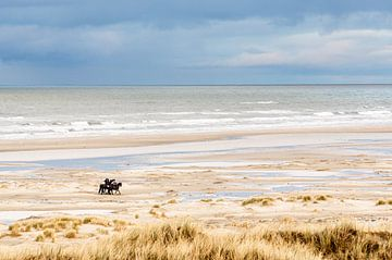 Paarden op het strand bij Hoorn (Terschelling) van Alex Hamstra