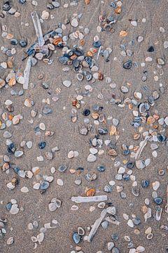 Golden hour schelpen op het strand van Katwijk aan Zee | Strand fotografie in Nederland van Evelien Lodewijks