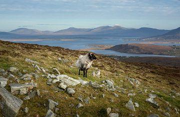Achill Island van Bo Scheeringa Photography