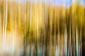 Yellow van Diane Cruysberghs