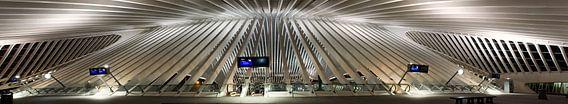 Panorama van Station Luik-Guillemins